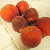 Peach Crisp and Tenerelli Orchards