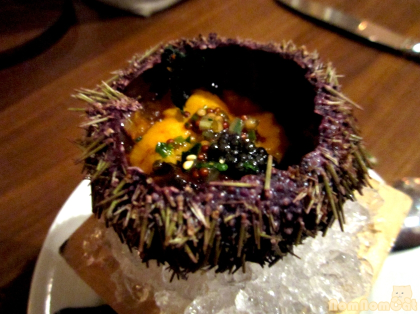 Course 2: Live Uni (the reveal)