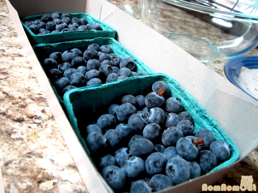 Fresh blueberries - among the first of the season!