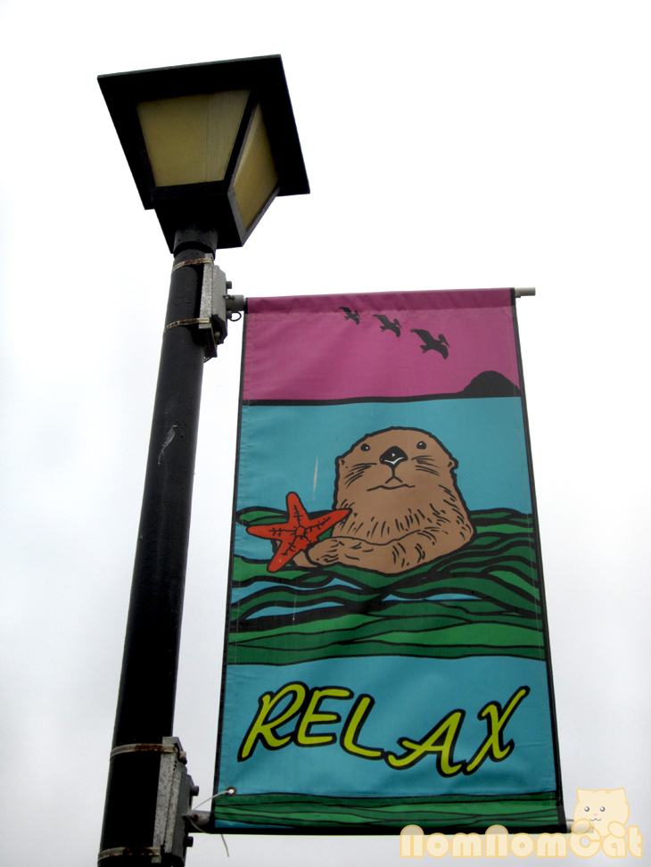 "The otter says, ""Relax."""